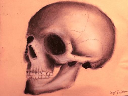 skull_sketch1_edited-1