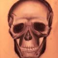 skull_sketch2_edited-1