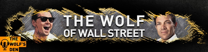 New Wolf YT Banner(4)_crop